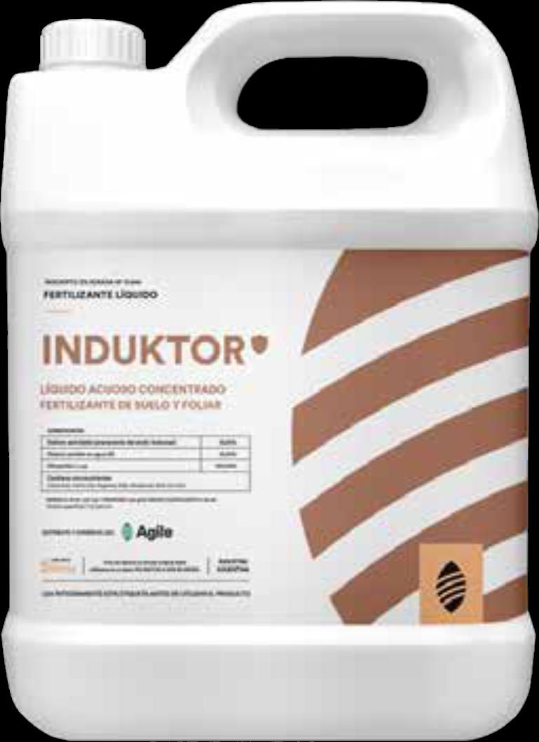 induktor-bidon
